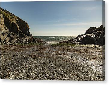 Canvas Print featuring the photograph Cadgwith Cove Beach by Brian Roscorla