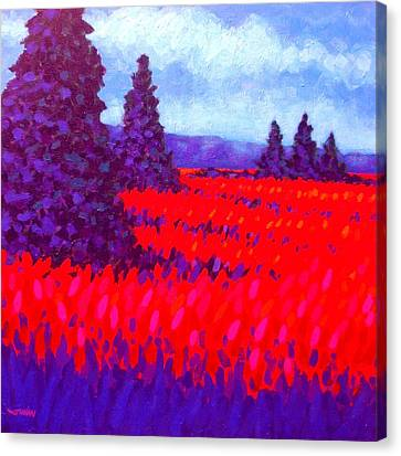 Cadmium Field Canvas Print by John  Nolan