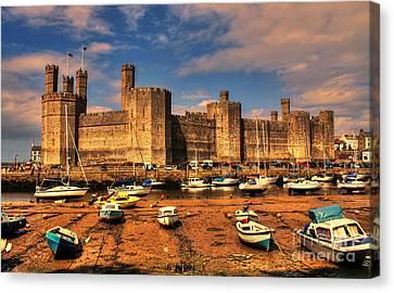 Chris Evans Canvas Print - Caernarfon Castle  by Chris Evans