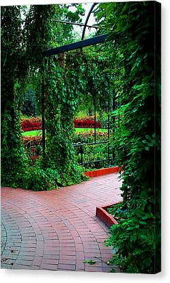 Cage  Growth Canvas Print