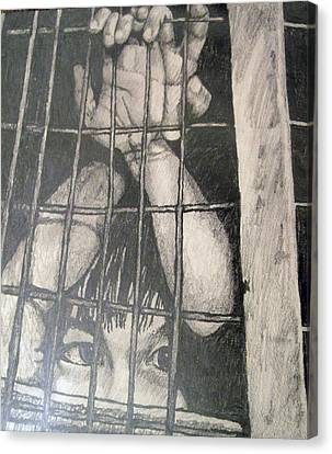 Caged Canvas Print by Jean Haynes