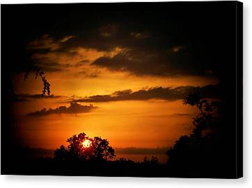 Caged Sunset Canvas Print by Karen Scovill