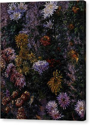 Gennevilliers Canvas Print - Caillebotte Gustave White And Yellow Chrysanthemums Garden At Petit Gennevilliers by Gustave Caillebotte