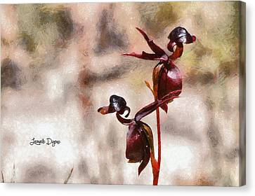 Eucalyptus Canvas Print - Caleana Major Flower by Leonardo Digenio