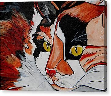 Veterinarian Art Canvas Print - Calico Close Up Of Face by Patti Schermerhorn