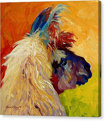 Calico Llama Canvas Print by Marion Rose