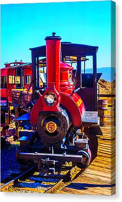 Calico Odessa Rr Canvas Print by Garry Gay
