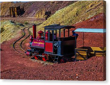 Calico On The Rails Canvas Print by Garry Gay