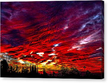 Sunrise In Los Angeles Canvas Print by Renee Anderson