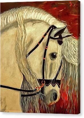 Califa Canvas Print by Manuel Sanchez