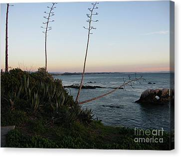 California At Twilight Canvas Print
