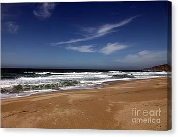 California Coast Canvas Print by Amanda Barcon