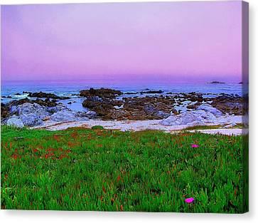 California Coast Canvas Print by Jen White