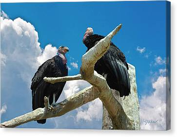 California Condors Canvas Print by Linda Dunn