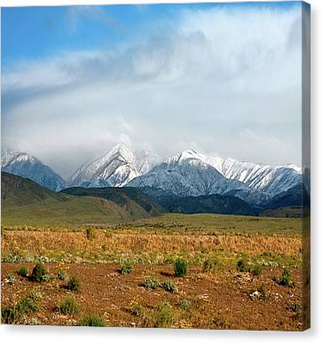 California Desert Landscape Canvas Print by Gilbert Artiaga