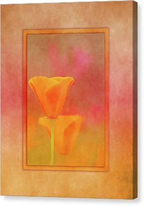Warm Canvas Print - California Dream by Terry Davis