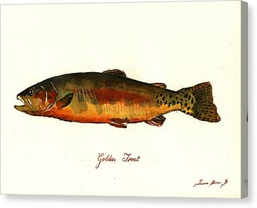 California Golden Trout Fish Canvas Print by Juan  Bosco