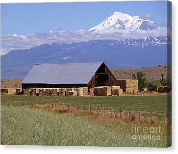 California Hay Barn Canvas Print by Methune Hively