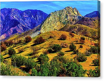 California Hills Canvas Print by Garry Gay