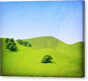 Canvas Print featuring the photograph California Hillside by Melanie Alexandra Price