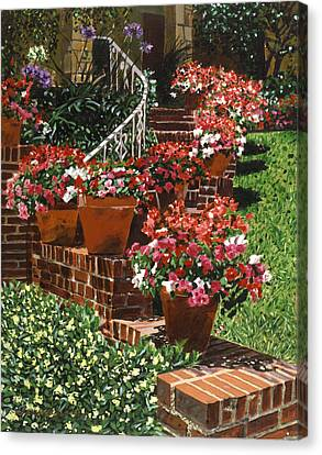 California Impatiens Canvas Print