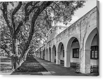 California Institute Of Technology Campus Trees Canvas Print by University Icons