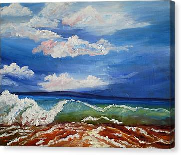 California Seascape Canvas Print by Mary Jo Zorad