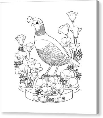 California State Bird And Flower Coloring Page Canvas Print