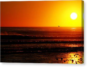 California Sunset  Canvas Print by Dorothy Cunningham