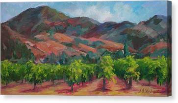 Calistoga Vineyards  Canvas Print by Deirdre Shibano