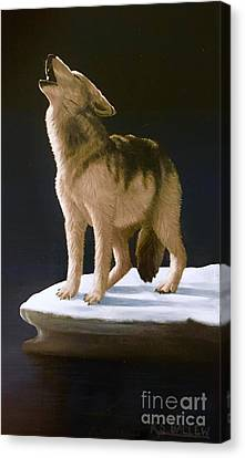 Call Of The Arctic Canvas Print