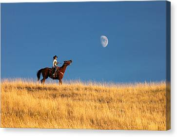 Call Of The Moon Canvas Print by Todd Klassy