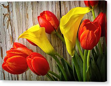 Calla Lilies And Red Tulips Canvas Print by Garry Gay
