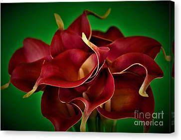 Calla Lily Bouquet Canvas Print