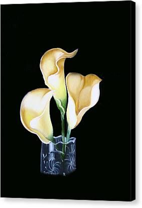 Calla Lily Canvas Print by Darlene Green
