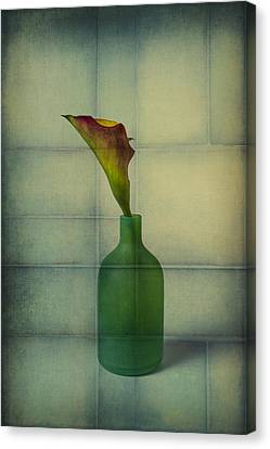 Calla Lily In Green Vase Canvas Print by Garry Gay