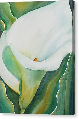 Calla Lily Canvas Print by Ruth Kamenev