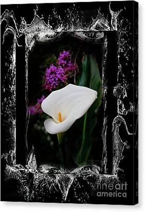Canvas Print featuring the photograph Calla Lily Splash by Al Bourassa