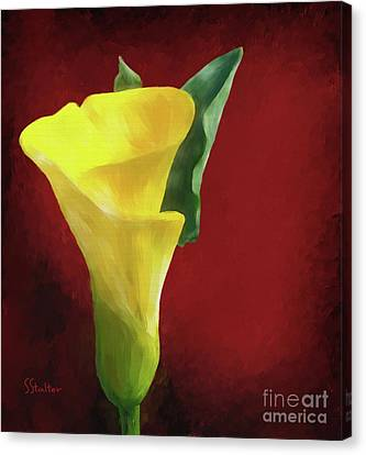 Calla Lily - Yellow Canvas Print by Shirley Stalter
