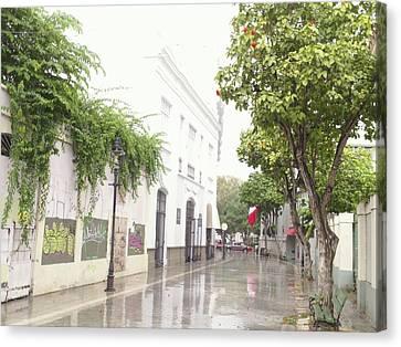 Callejon Amor, Ponce, Puerto Rico Canvas Print
