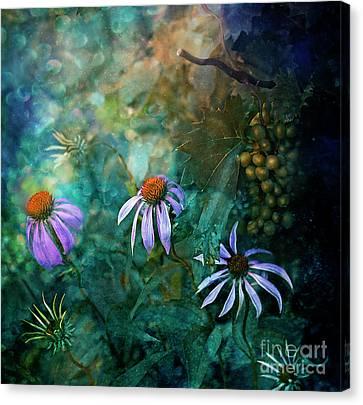 Callisto Canvas Print by Agnieszka Mlicka
