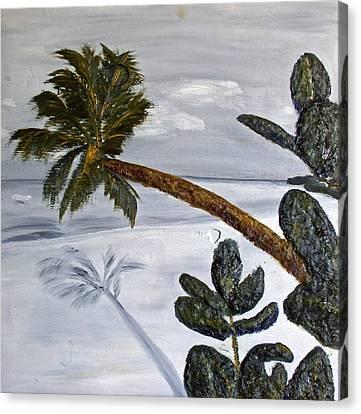 Calm Beach Palm Canvas Print