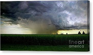 Calm Before The Storm Canvas Print by Sue Stefanowicz