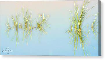 Calm Canvas Print