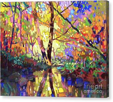Calm Reflection Canvas Print