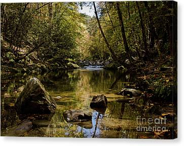 Canvas Print featuring the photograph Calmer Water by Douglas Stucky