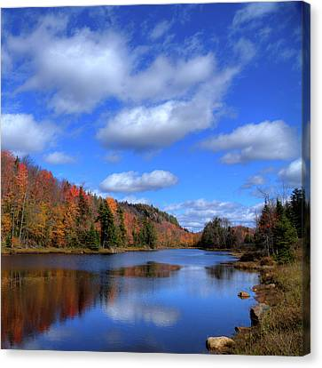 Calmness On Bald Mountain Pond Canvas Print by David Patterson