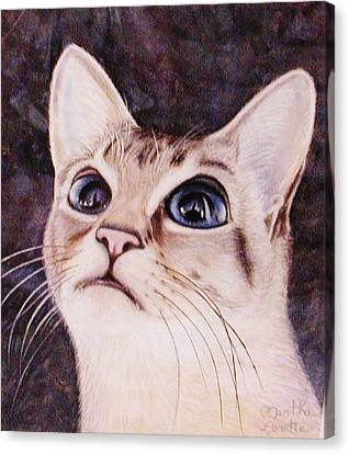 Calvin The Cat Canvas Print by Martha Ayotte
