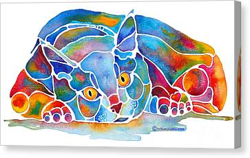 Calypso Cat Canvas Print by Jo Lynch