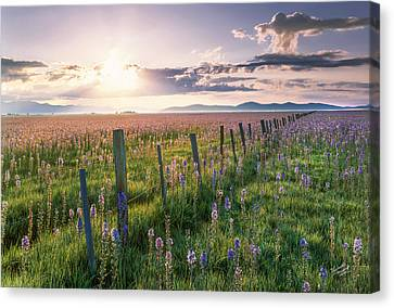 Camas Marsh 3 Canvas Print